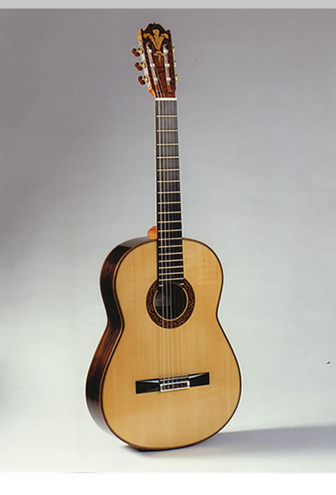Paul Fischer Guitar